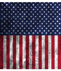 American Flag Dirty Vinyl