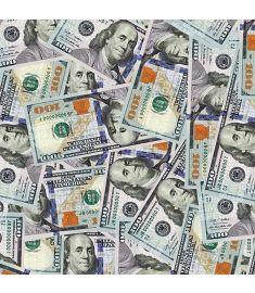$100 Bill Sign Vinyl