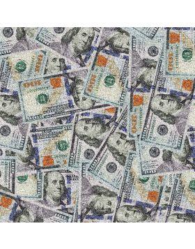 $100 Bills Glitter Vinyl