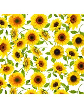 Sunflowers White Sign Vinyl